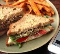 Grilled Basil Cheeze Sandwich